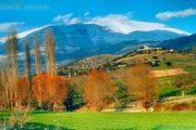 Γνωρίζοντας την Καλλιθέα και τα Καλύβια του Δήμου Ελασσόνας
