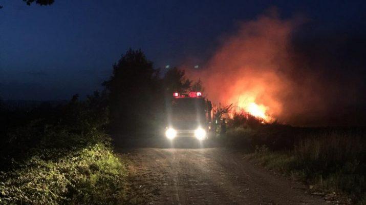 Μεγάλη φωτιά στο Ριζαριό Τρικάλων