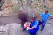 Μεθυσμένος επιχειρεί να δώσει γάλα σε αρκούδα και το πληρώνει ακριβά