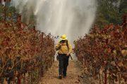 Μαίνονται οι φονικές πυρκαγιές στην Καλιφόρνια -Στους 41 οι νεκροί