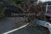 Λαμία: «Σήκωσε» σκεπές και έριξε δέντρα ο αέρας - Δείτε εικόνες