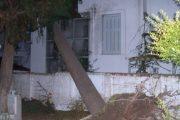 Δέντρο προσγειώθηκε σε μπαλκόνι πολυκατοικίας στο κέντρο της Λάρισας