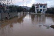 «Πνίγηκαν» ξανά τα παράλια Λάρισας (ΦΩΤΟ)