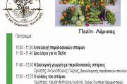 4η «Γιορτή των Σπόρων» διοργανώνει το ΠΕΛΙΤΙ Λάρισας