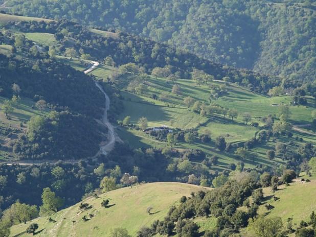 Τελεσίγραφο και στο Δήμο Ελασσόνας για τους δασικούς χάρτες