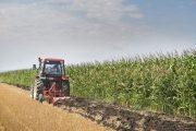 Στο μέτρο νέων αγροτών εντάσσονται 281 επιλαχόντες στη Θεσσαλία (ΟΝΟΜΑΤΑ)