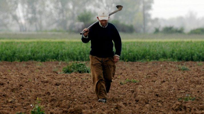 Παραχωρούνται χωράφια με 5 ευρώ το χρόνο – Οι δικαιούχοι