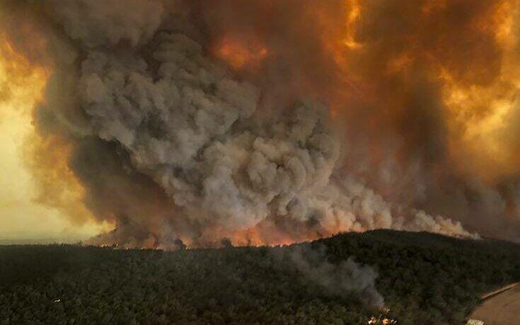Η Αυστραλία ατελείωτος τάφος νεκρών ζώων: Σχεδόν τρία δισεκατομμύρια κάηκαν στις φωτιές