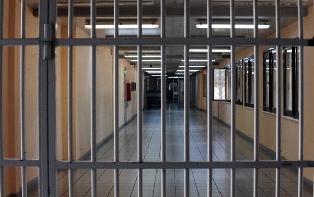 Πρώτη προφυλάκιση για ζωοκτονία στην Ελλάδα: 23χρονος που δολοφόνησε γάτα στη φυλακή