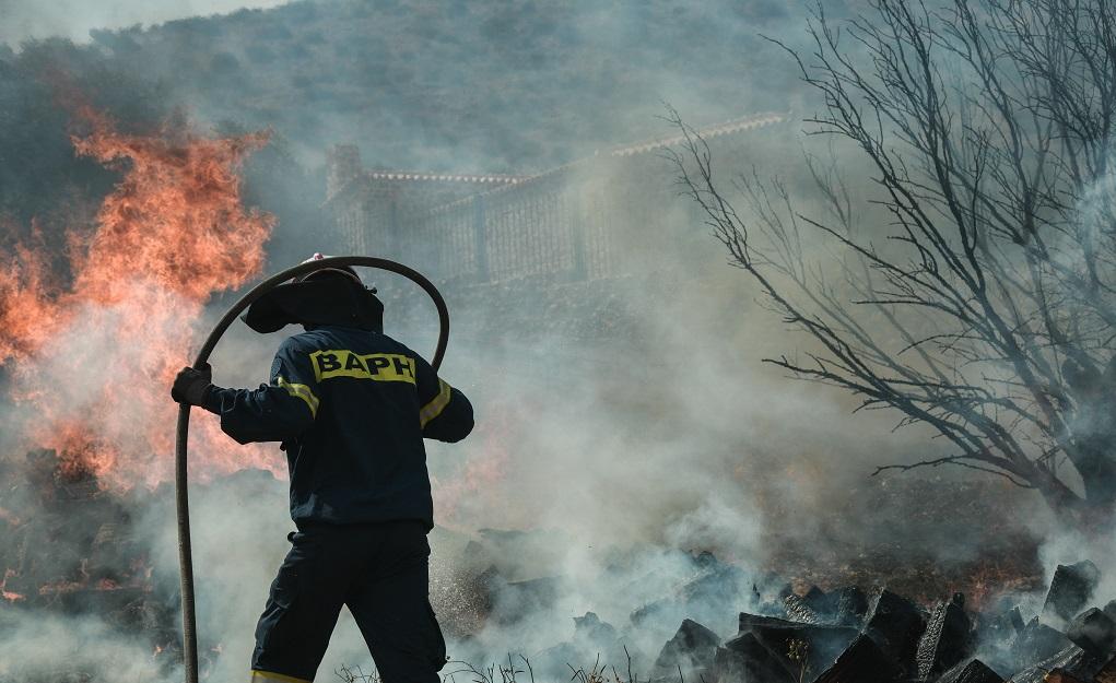 Φωτιά σε δασική έκταση στα Μέγαρα