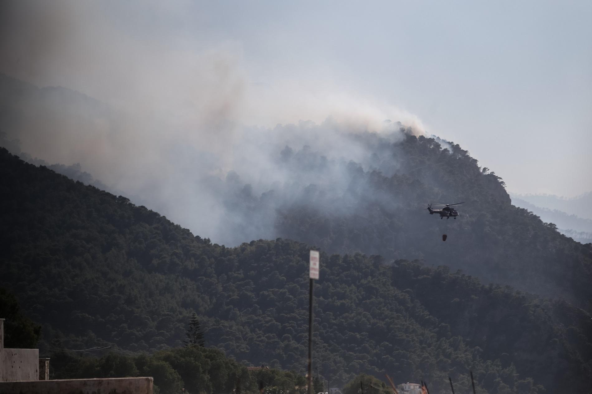 Πυρκαγιά στο Συκάμινο Ωρωπού – Συναγερμός στην Πυροσβεστική