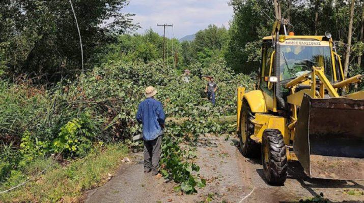 Λάρισα: Μπουρίνι χτύπησε την περιοχή της Ποταμιάς – Μεγάλες οι ζημιές μέχρι και στον δρόμο (ΦΩΤΟ)