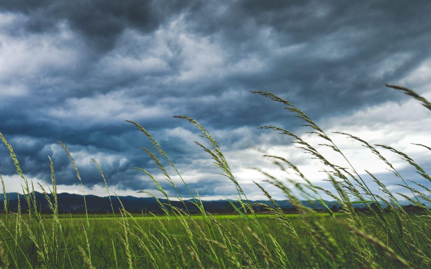 Ο καιρός με την Αναστασία Τυράσκη: Πτώση της θερμοκρασίας και βροχές στα ανατολικά (video)